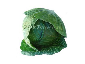 Cabbage 1pc