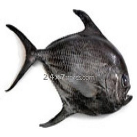 Pomfret Black Fish Medium... 1 kg
